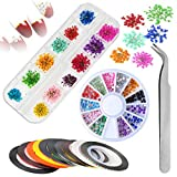 Fiori Secchi Nail Art,Mwoot Nail Art Design Set con 12 Fiori Naturali A Secco con 10 Striping Tape Nail Art e 1 Scatole Strass Decorazione Tweezer per Le Donne Nail Art Lavoro Mestieri