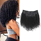 Rolisy Kinky Curly Clip in Hair Extensions Afro 3C 4A Kinky Curly Hair Clip Ins for Women Thick Soft 8A Brazilian Remy Hair,16 Inch,Black Color,10/Pcs with 24 Clips,120 Gram