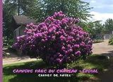 Camping parc du château - Épinal - Carnet de notes: Cahier de note - Journal intime fille - Couverture arbuste lilas violet