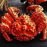 蟹 ハサミ 花咲ガニ 姿 400g ボイル 1尾 約1人前 カニ はさみ 北国からの贈り物