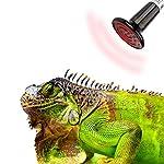 SunGrow Ceramic Heating Lamp for Green Iguana, 150-W Infrared Heat Emitter, 110V Energy-Efficient Infrared Light Bulb