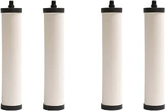 Franke FRC06 Undersink Water Filtration Filter for FRCNSTR, Chlorine Removal (Pack of 4)