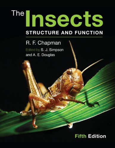 The Insects: Structure and Function (English Edition)