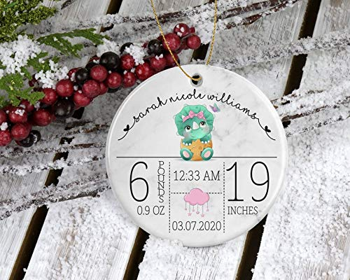 Decorations Baby Girl Dinosaur First Christmas Ornament - My First Christmas Personalized with Date, Weight, Length, Time of Birth - Keepsake Memory Decorative Wall Art for Christmas and Holidays