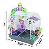 DZL Petite cage pour hamster avec tubes multicolores 29,5 x 29,5 x 38 cm