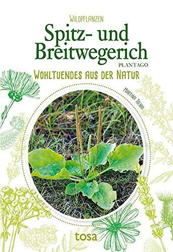 Spitz- und Breitwegerich: Wohltuendes aus der Natur