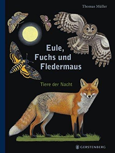 Eule, Fuchs und Fledermaus