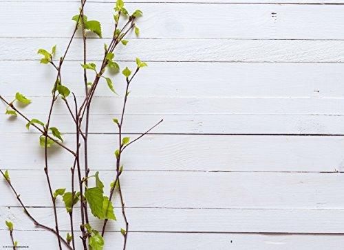 Tischset I Platzset - Frühling - Frühlingszweige auf weißem Holztisch - 12 Stück aus hochwertigem Papier in Aufbewahrungsmappe - Die besondere Tischdekoration für Frühling und Ostern