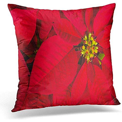 Niet geschikt decoratief kussen overtrek, gele plant rode kerstster bloem euphorbia pulcherrima acka kerstmode print kussenslopen voor thuiskantoor