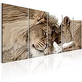 murando Cuadro en Lienzo León 225x90 cm Impresión de 5 Piezas Material Tejido no Tejido Impresión Artística Imagen Gráfica Decoracion de Pared Naturaleza Animal Paisaje g-B-0061-b-o