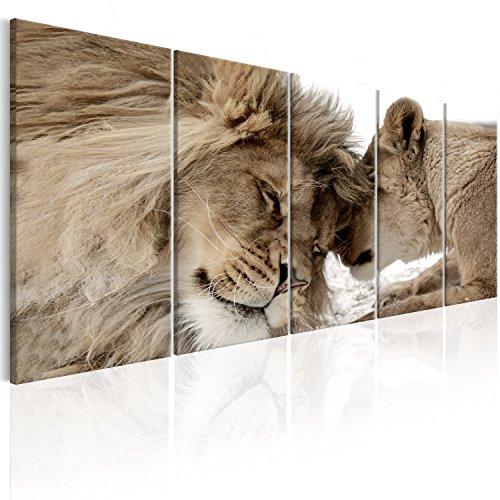 murando Cuadro en Lienzo León 200x80 cm Impresión de 5 Piezas Material Tejido no Tejido Impresión Artística Imagen Gráfica Decoracion de Pared Naturaleza Animal Paisaje g-B-0061-b-o