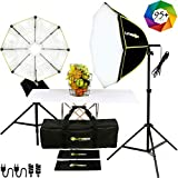 LITEBOX 1100W Dual Continuous Softbox Lighting Kit for Photography & Video (24' x 24') - 2 Premium Softboxes + Professional Light Stands for Photoshoot YouTube Video Shooting - 5500K Daylight 95+ CRI