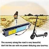 Festnight Batterie de Remplacement Rechargeable pour Batterie au Lithium 36V 6.6AH pour Scooter électrique Xiaomi de Hauteur: 1: 1-1: 2