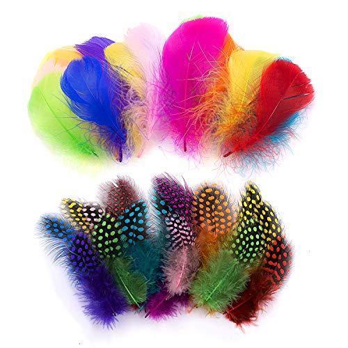 300 pezzi Piume colorate mix Piccolo per artigianato Natura,pastello glitterato Set di artigianali miste,decorazione indiana per bambini orecchini fai-da-te accessori copricapo da sposa acchiappasogni