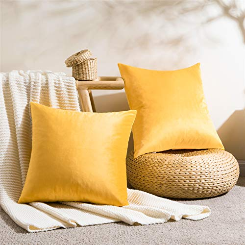 Topfinel - Juego de 2 fundas de cojín, de terciopelo suave, para salón, dormitorio, sofá, modernas, cuadradas, de diseño liso, decoración navideña, para jardín, oficina