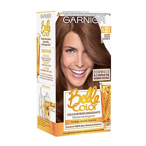 Garnier - Belle Color - Terre de Soleil - Coloration permanente Blond - 6.23 Blond foncé radieux - Lot de 2