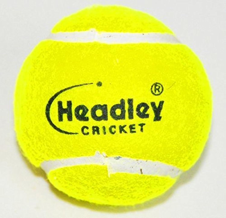 Headley Cricket Ball Heavy Tennis Balls (Yellow, 12-Pack)