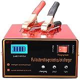 Aibeau Chargeur de batterie de voiture 10 A 12 V/24 V Chargeur de batterie de voiture Chargeur de maintenance Convient pour la plupart des types de batteries plomb-acide 2AH-150AH