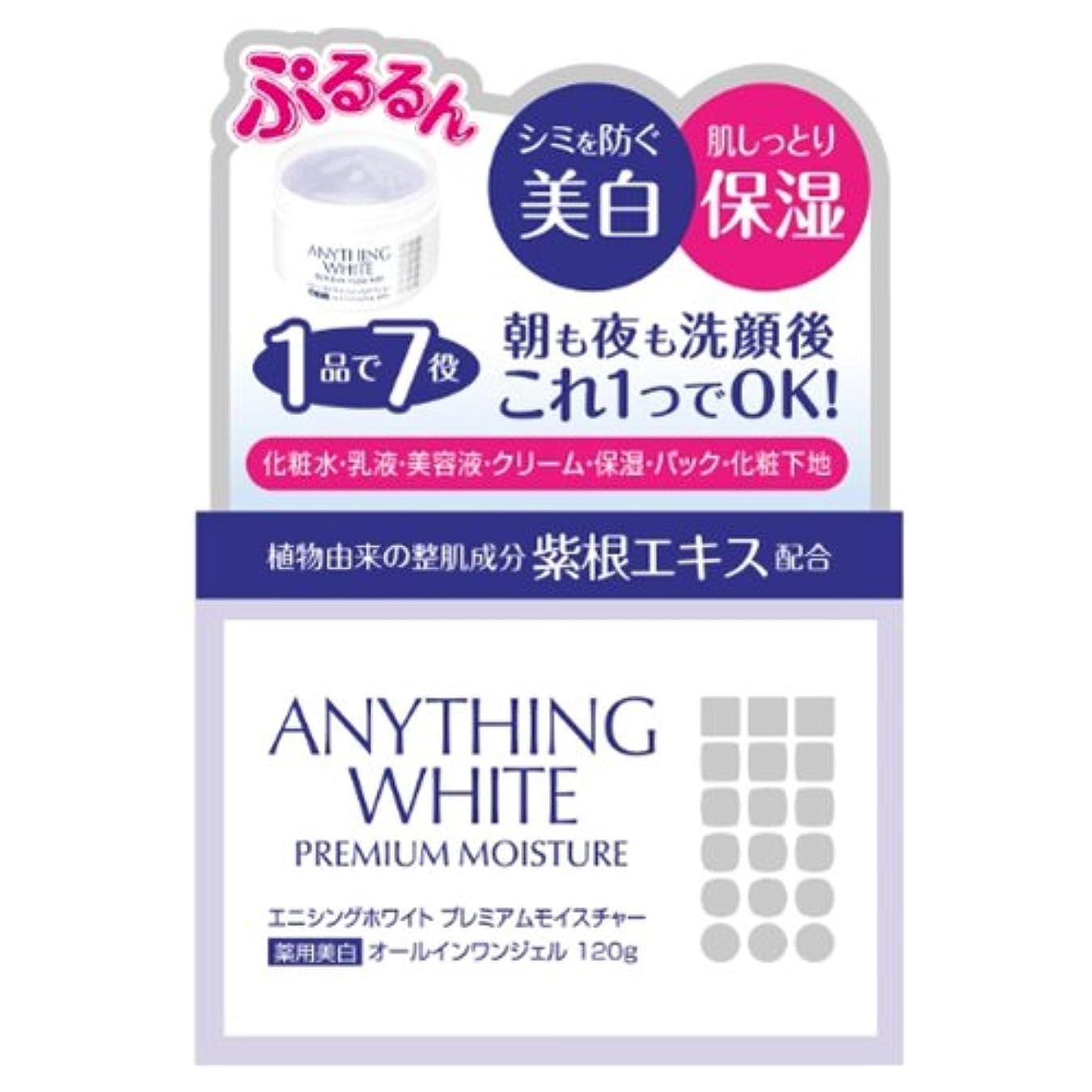 馬鹿スイッチ防腐剤エニシングホワイト プレミアムモイスチャー 120g