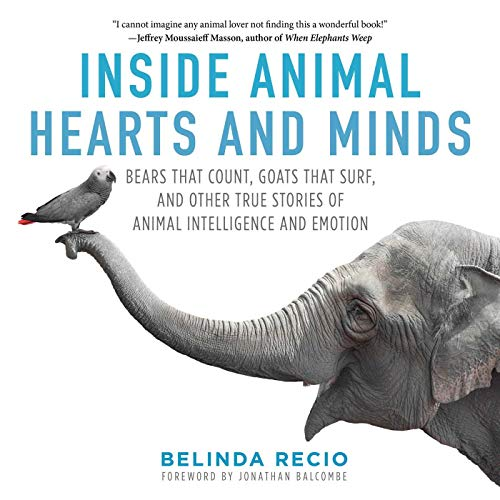 Download Inside Animal Hearts and Minds: Bears That Count, Goats That Surf, and Other True Stories of Animal Intelligence and Emotion 151071894X