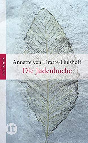Die Judenbuche: Ein Sittengemälde aus dem gebirgichten Westfalen (insel taschenbuch)