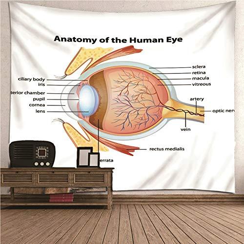 Aeici Papel Tapiz Exterior, Tapiz Tela Tapiz de pared Anatomía del ojo humano Tapiz- blanco, 300x260CM