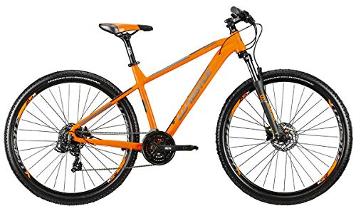 WHISTLE Bici MTB Front 29 PATWIN 2165 Telaio Alluminio Gruppo Shimano RD-TX500 21V Forcella SUNTOUR XCT30 Gamma 2021 (19' - 48 CM)