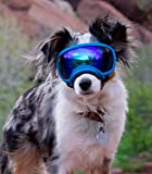 Rex Specs Dog Goggles - Eye Protection for The Active Dog