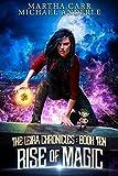 Rise of Magic (The Leira Chronicles Book 10)