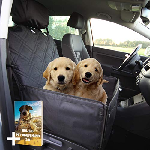 Nestor & Gamble I Extra Stabiler 2-in-1 Hundesitz - Hochwertiger Auto Hundesitz für kleine bis mittlere Hunde - Hunde Autositz mit Kopfstützenbezug Anschnallgurt Rückenlehnenschutz