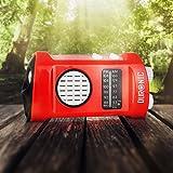 Duronic Ecohand Dynamo Radio AM/FM, wiederaufladbar – Kurbelradio - mit integrierter LED Taschenlampe, Handkurbel/Outdoor/Camping/Wandern - 2