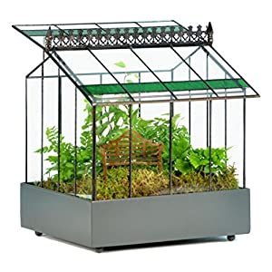 h potter glass terrarium planter wardian case container with green glass accent for succulent plants flowers orchids foliage and more war143
