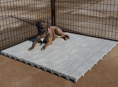 Cove Products 2' X 4' Raised Dog Kennel Comfortable Surface Flooring