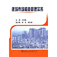 construction market audit management practices [paperback](Chinese Edition)