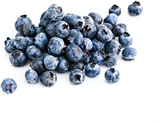 Driscoll's Organic Blueberry, 170g - Chilled