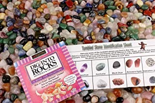 Dancing Bear 11 Pounds Tumbled Polished Natural Gem Stones + Educational Color ID Sheet & 24 Page Rock & Mineral Book. Average Stone Size ¾ inch. Choose 1, 2, 5, 11 or 22 Pounds Brand
