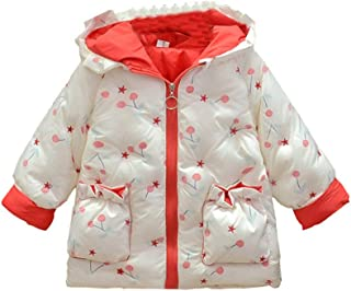 QitunC Baby Girls Long Sleeve Floral Print Zipper Coat Winter Hooded Puffer Jackets 1-4 Years Old Lightweight Warm Padded ...