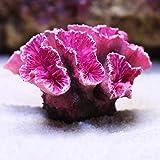 Hieefi Coral Artificial, Plantas del Acuario, Acuario Decoraciones, Plantas del Acuario Ornamento Coral Acuario Artificiales De Resina No Tóxica Paisaje Decoraciones, Rosa