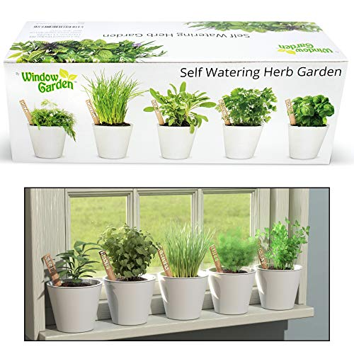 Window Garden Self Watering Herb Starter Kit - Easily Grow Seeds to Live Fresh Plants On Your Kitchen Windowsill. Attractive No Mess Planters and Bamboo Markers, Makes a Unique Gift for Women, Men