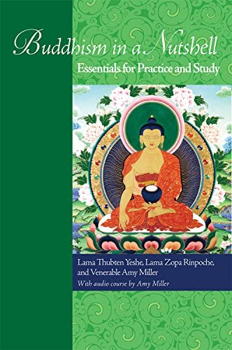 Buddhism in a Nutshell eBook product image