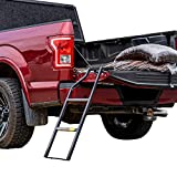 Traxion 5-100 Tailgate Ladder , Black