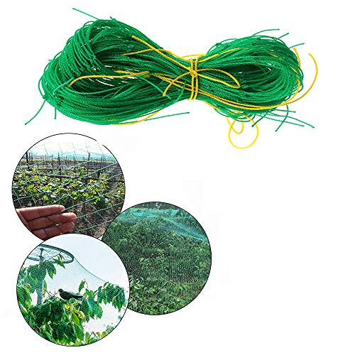 ZXY Red de jardín Anti Bird, Vegetal Fruit Plant Pond Net, Protección Fruit Morning Glory Vine Net Flower Vine Pepino Trellis Netting,Verde,1.8x1.8