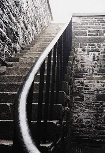 JYWSHT Puzzle 500 Piezas Escaleras hacia La Luz Obra De Arte De Juego De Adulto Rompecabezas para Navidad Rompecabezas De Piso Juego De Rompecabezas Y Juego Familiar