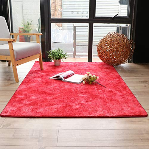 QWEASDZX Rugs Polyester Rugs Home Rugs Decorative Rugs Washable And Reusable Living Room Rugs 100x160cm