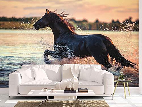 Oedim Fotomural Vinilo para Pared Caballo en el Agua   Mural   Fotomural Vinilo Decorativo   200 x 150 cm   Decoración comedores, Salones, Habitaciones