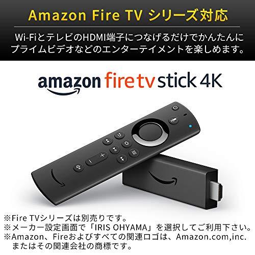 アイリスオーヤマ24V型液晶テレビ24WB10ハイビジョン裏番組録画対応外付HDD録画対応