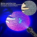 2 Pack UV Flashlight Black Light, Escolite 51 LED 395nm Ultraviolet Blacklight Detector for Dry Pet Urine and Bed Bug 13