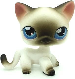 ZAD Rare Littlest Pet Shop Black White Short Hair Siamese Cat Blue Eyes LPS #5