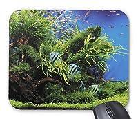 エンゼルフィッシュ水槽のマウスパッド:フォトパッド( 世界の熱帯魚シリーズ ) (アップ)