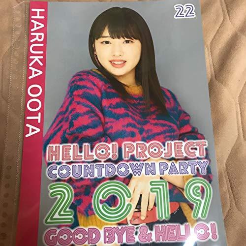 太田遥香 アンジュルム COUNTDOWN PARTY 2019 ~ GOOD BYE & HELLO ! ピンナップポスター ピンポス